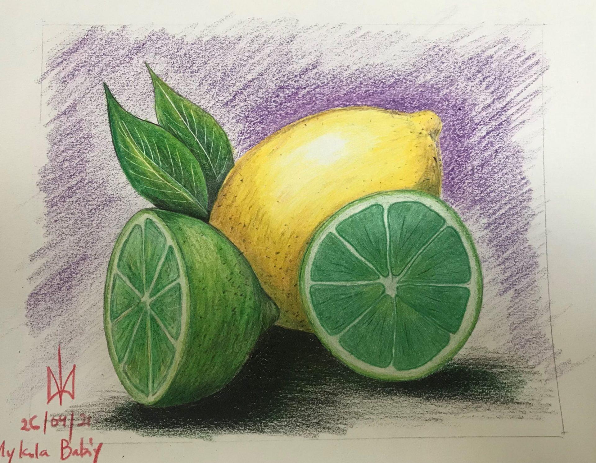Limes and Lemons. Colour Pencils. Practice